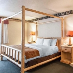 Speciality Suite room